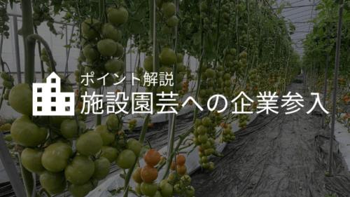 施設園芸への企業参入