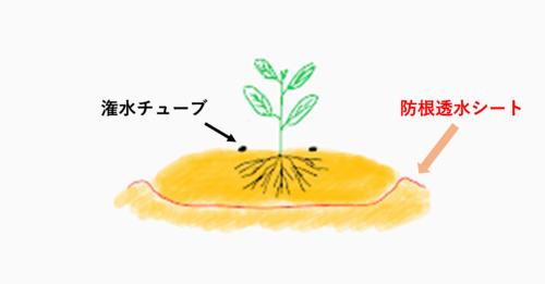 隔離栽培イメージ図