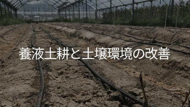 養液土耕と土壌環境