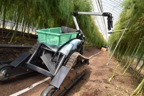 自動収穫ロボット
